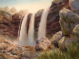 Wannon Falls near Hamilton