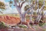 Flinders 10