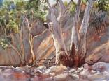 Flinders 3