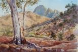 Flinders 9