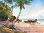 Etty Bay, Nth Queensland